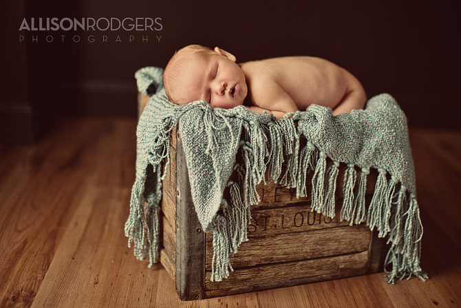 Allison_Rodgers_Photography_Collierville_Photography_oo1